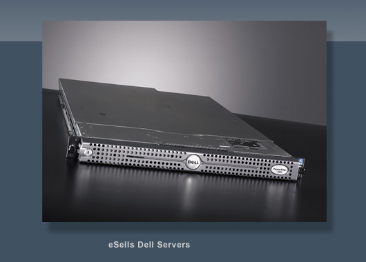 eSells Dell Server Hosting
